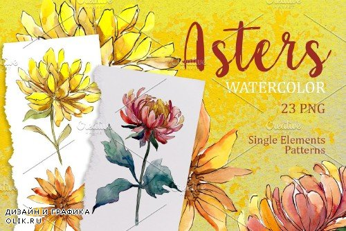 Yellow Watercolor Asters PNG set - 3928440