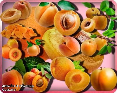 Прозрачные клипарты для фотошопа - Сочный абрикос