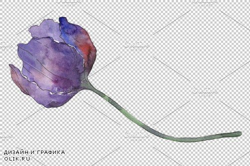 Tulips blue Watercolor png - 3934855
