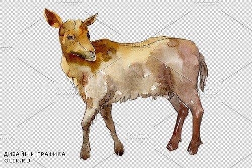 Farm animals: goat Watercolor png - 3934748