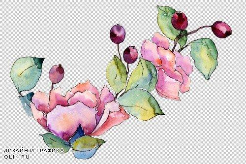 Bouquet Tender dreams watercolor png - 3950957
