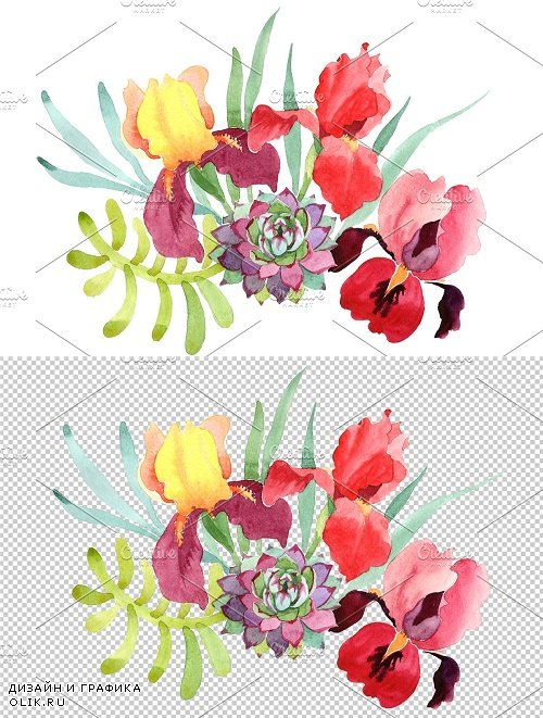 Bouquet with red irises watercolor PNG - 3954132