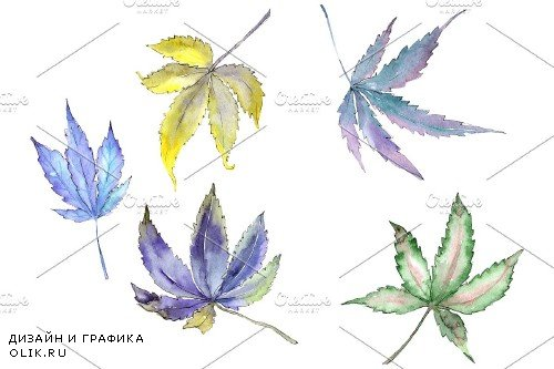 Cannabis plant watercolor png - 3958814
