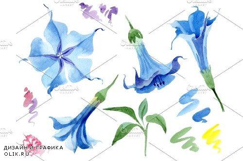 Brugmansia soft blue watercolor png - 3967129