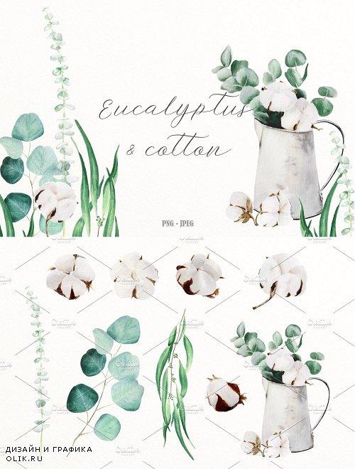 Eucalyptus & cotton watercolor set - 2578879