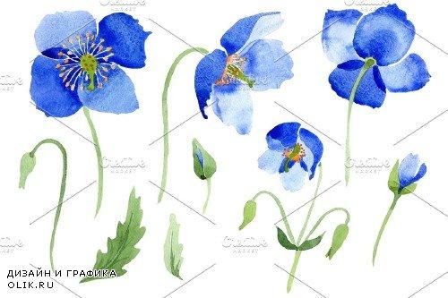 Ultramarine Poppies blue flower - 3988028