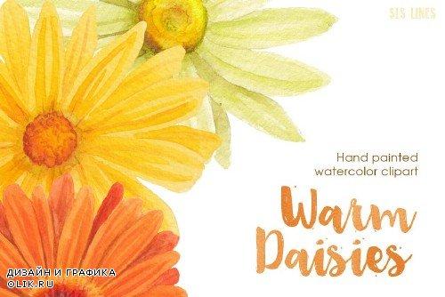 Warm Color Daisy Florals - 412555