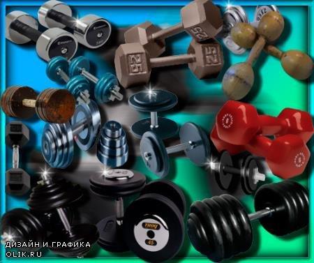 Png клипарты для фоторамки - Гантели разных видов