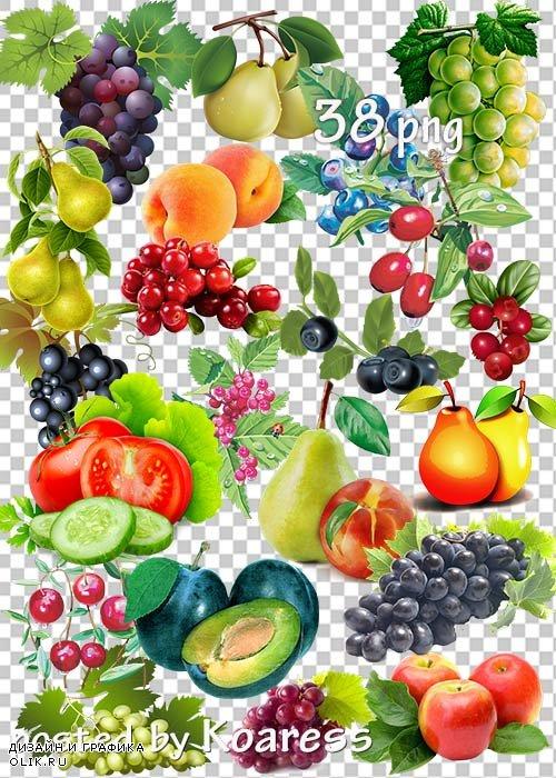 Овощи, фрукты, ягоды на прозрачном фоне - Осенний урожай
