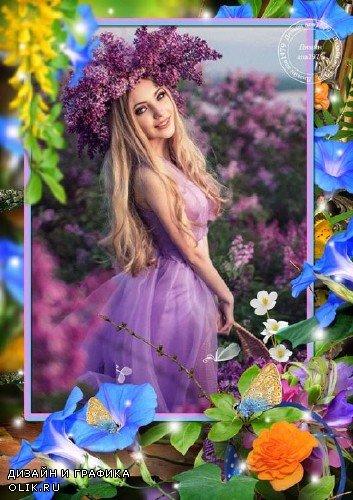Рамка для фотошопа - Цветочный фейерверк