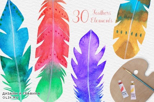 Watercolor Feather Clipart - 4183917