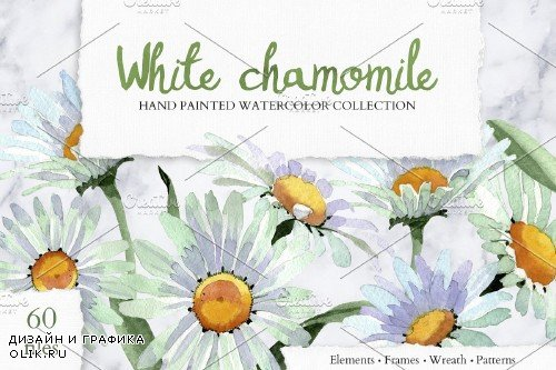 White chamomile flowers watercolor - 4194283