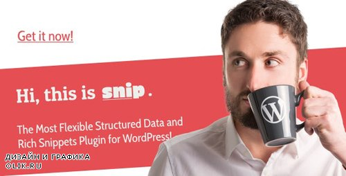 CodeCanyon - SNIP v2.14.6 - Structured Data Plugin for WordPress - 3464341 - NULLED