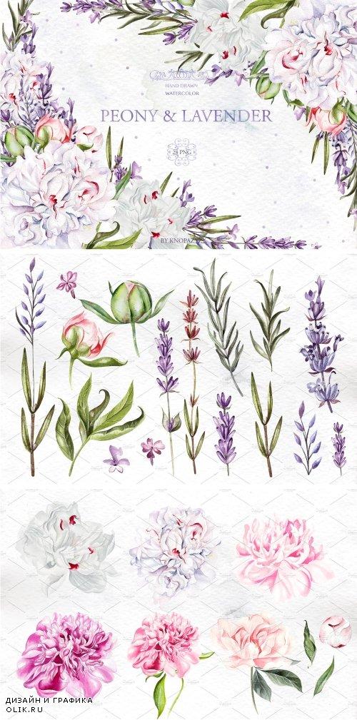 Watercolor Peony & Lavender - 4238314