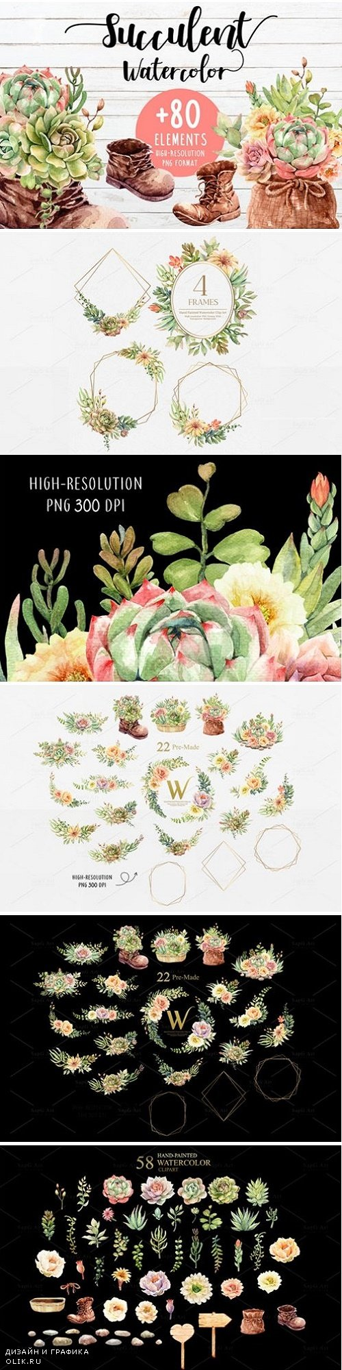 Succulents and Boots Watercolor set - 3825873