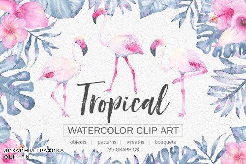 Tropical watercolor clip art - 1746163