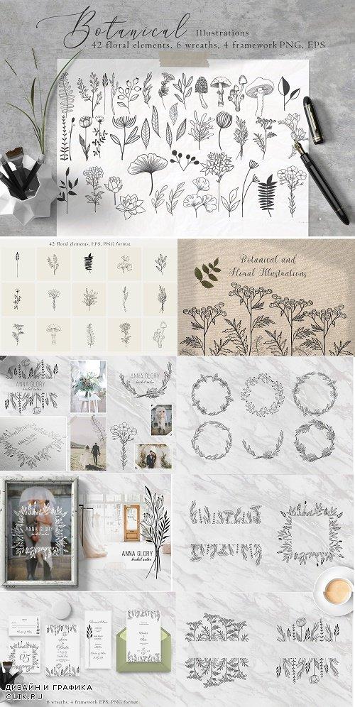 Floral Botanical Illustrations - 4479176