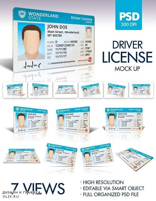 Driver License MockUp - 1752478