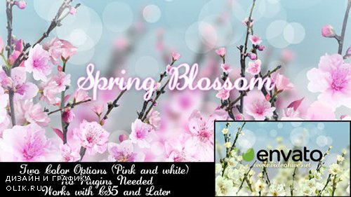VH - Spring Blossom 7133339