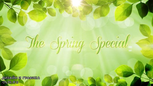 VH - The Spring Special Promo Pack 4437773