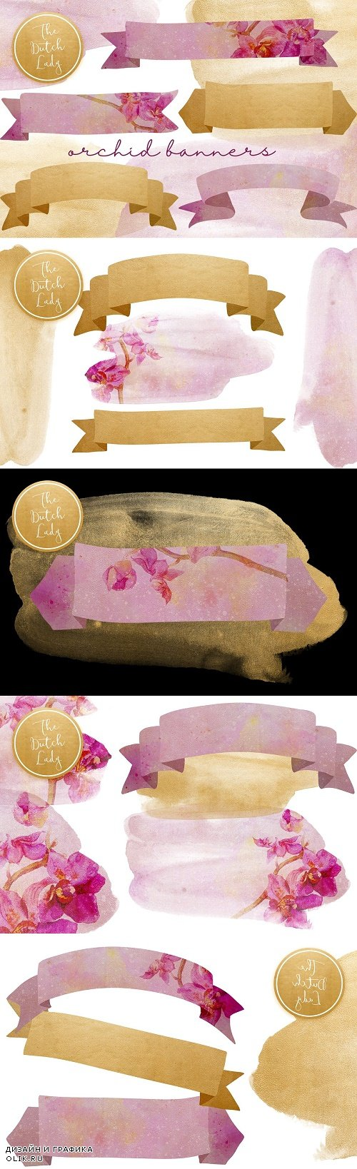 Orchid Banner Clipart Set - 4573912