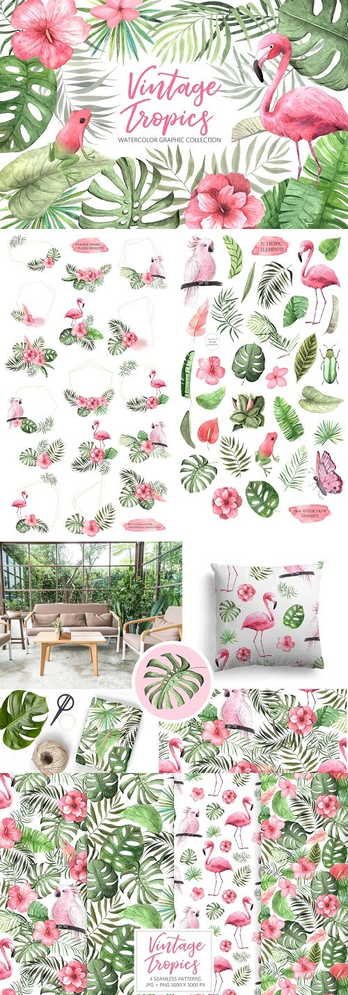 Watercolor Vintage Tropical Set - 2683150
