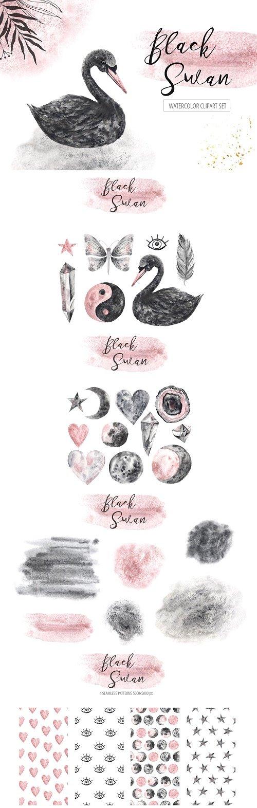 Watercolor Black Swan Set - 3075615