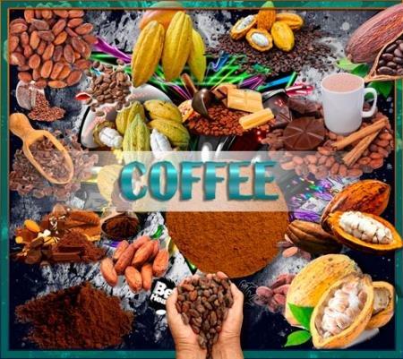 Клипарты без фона - Какао и какао бобы