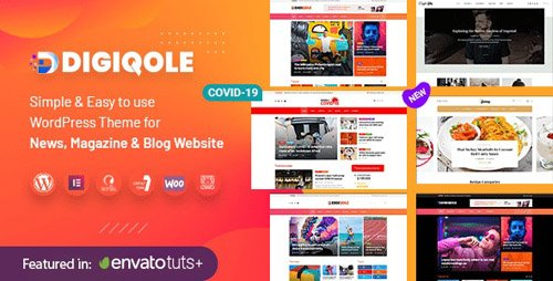 ThemeForest - Digiqole v1.2.5 - News Magazine WordPress Theme - 24304706