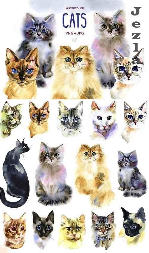 Watercolor cats clipart - 1213467