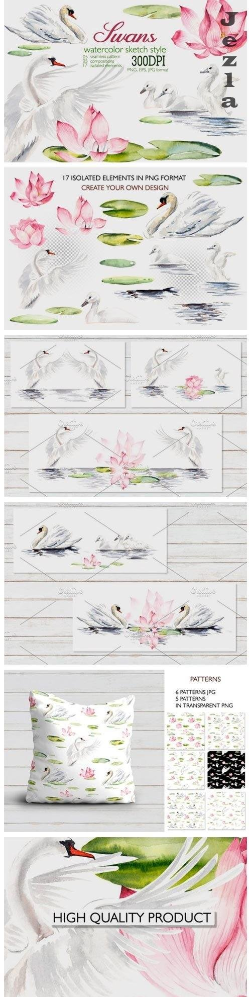 Watercolor swans - 351891
