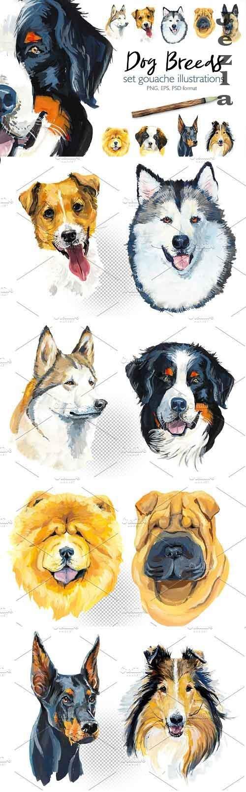 Dog breeds - 3716953