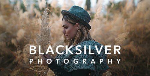 ThemeForest - Blacksilver v3.8 - Photography Theme for WordPress - 23717875