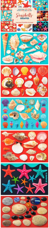 Isolated Seashells & Stones - 1776922