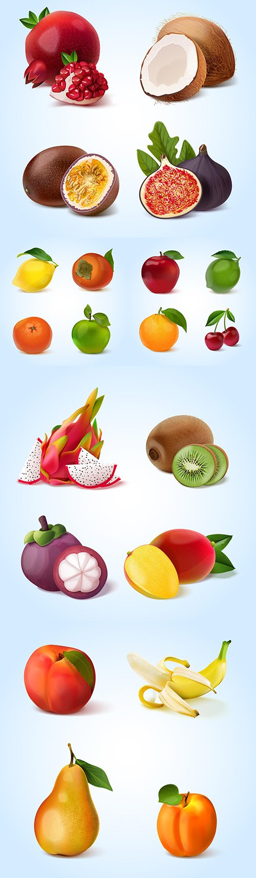 Realistic collection of ripe and tropical fruit illustrations
