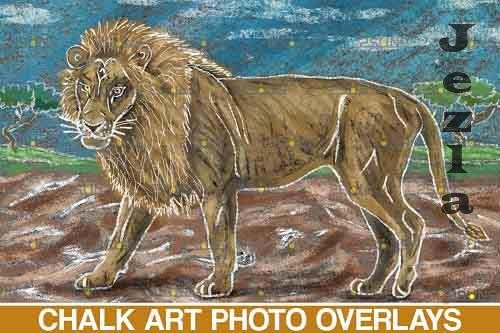 Sidewalk Chalk art Overlay, Lion backdrop and safari  - 709637