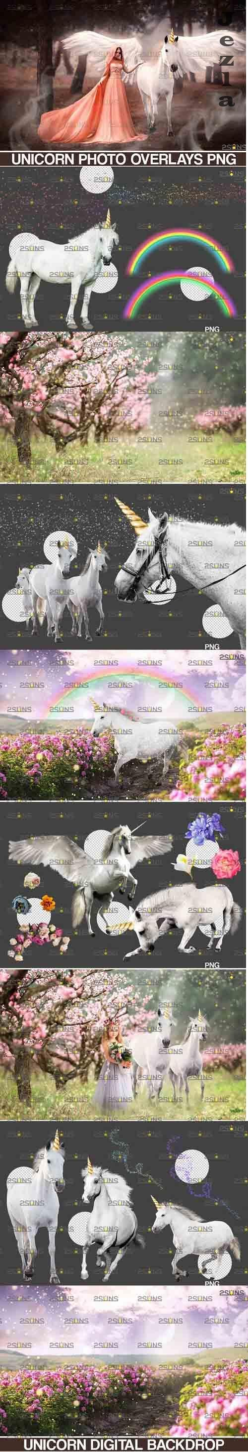 Unicorn overlay & Flower backdrop, White Horse png overlays - 738327