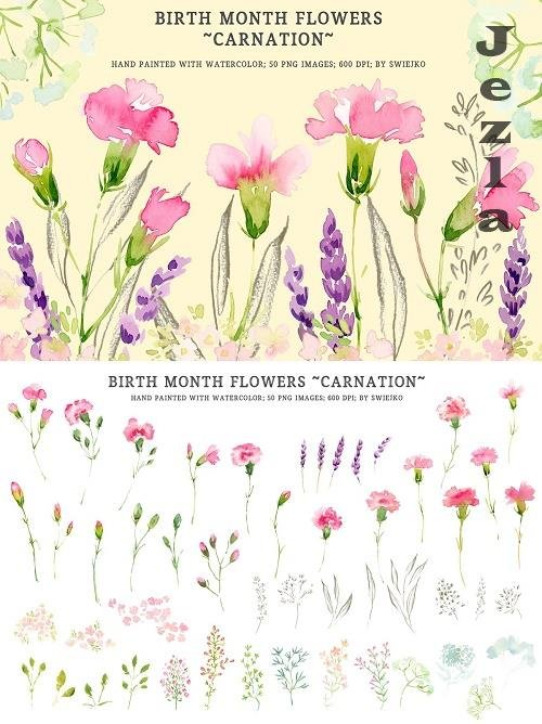 Watercolor Birth Flowers - Carnation - 5178765
