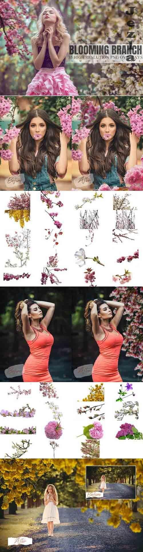35 Blooming Branch Overlays  - 763758