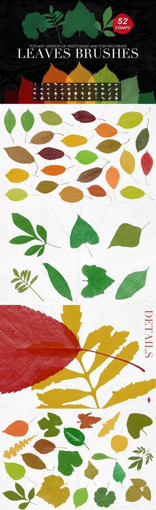 Leaves PHSP Stamp Brushes - 5238321