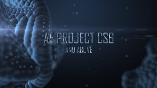 Snake Scales 19361549 - Project for AFEFS (Videohive)