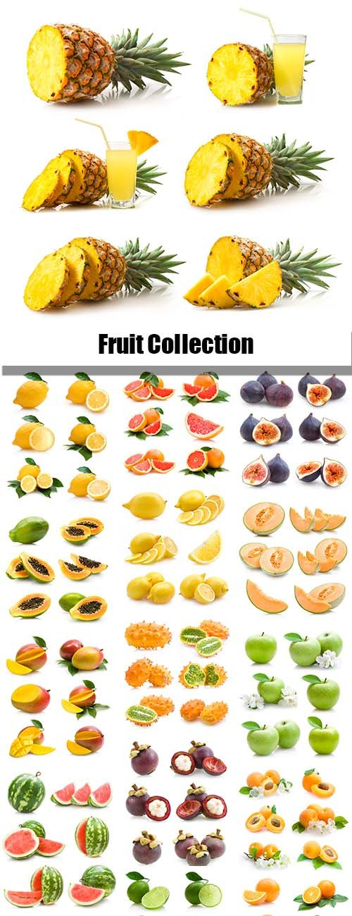 Fruit Collection - 25xJPGs