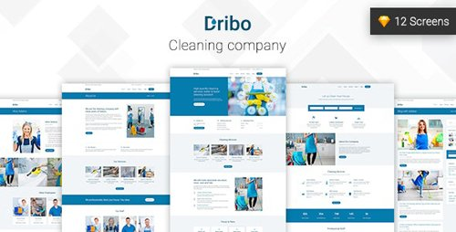 ThemeForest - Dribo v1.0 - Cleaning company Sketch Template - 22566699