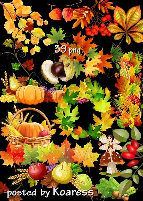 Набор осеннего клипарта в png - листья, урожай, бордюры, композиции из листьев