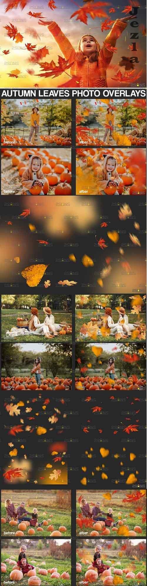 Autumn leaf overlay & PHSP overlay Fall overlay - 895365