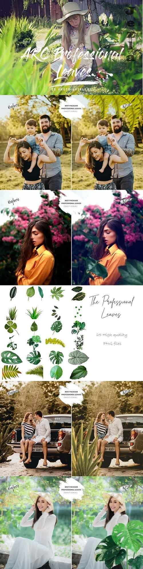 25 Arc Professional Leaves PNG Photoshop Overlays - 904882