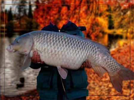 Мужской фотошаблон - На осенней рыбалке