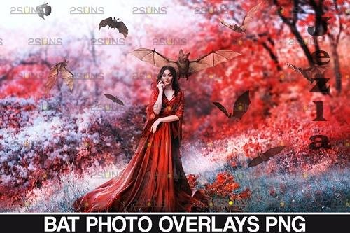 32 Halloween overlay Photoshop overlay Realistic bat clipart - 934531