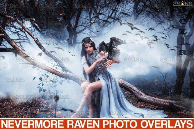 50 Halloween overlay Photoshop overlay Realistic raven - 934530