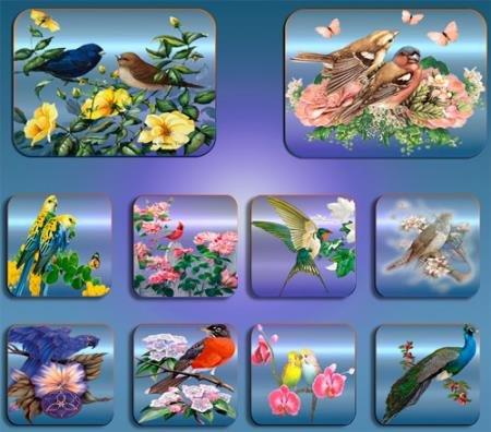 Png клипарты без фона - Птицы в цветах